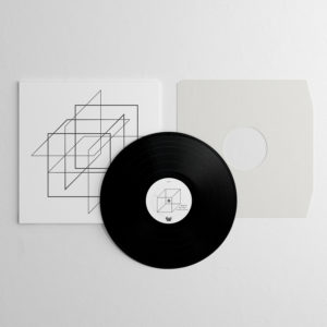 pieces for her vinyl record