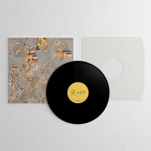 Liminal Garden vinyl record