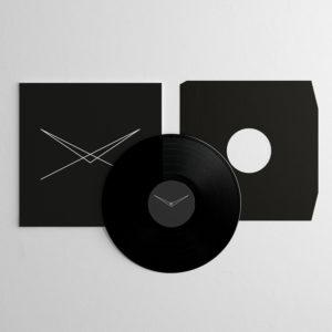 Everyone Was A Bird - Remixed vinyl record